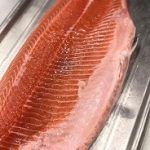 salmon 21